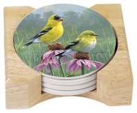 Hautman Beautiful Songbird Goldfinch 4 Stone Coasters& Holder